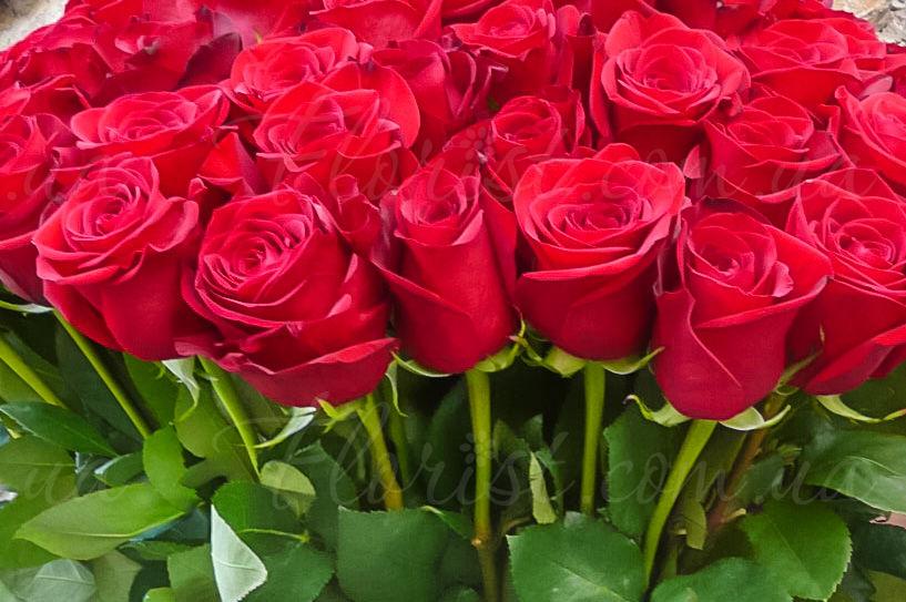 Картинки по запросу букет красных роз