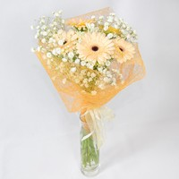 Bouquet of gerberas Summer Breeze - view more