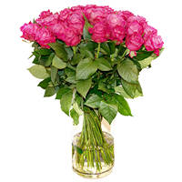 Bouquet of pink roses Holiday Mood
