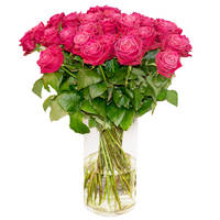 Bouquet of pink roses Flower Congratulations - view more