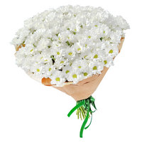 Bouquet white chrysanthemums Fairy Glade - view more