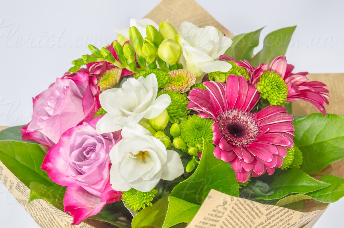 Send Gentle White Pink Coloured Bouquet Of Gerberas Carnations