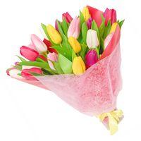 Букет  из тюльпанов Весенние Грёзы