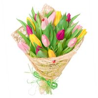 Bouquet of tulips Spring Rainbow - view more