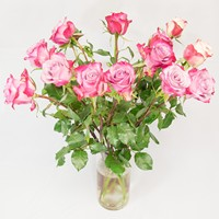 Bouquet of pink roses Sentiments - view more