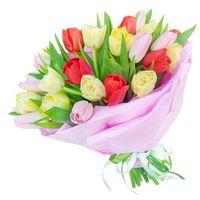 Букет  из тюльпанов Весенняя Радуга Чувств