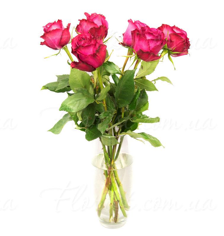 Заказать букет с доставкой москва братиславская купить цветы дешево 10 роз за 150 рублей