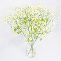 Bouquet Bright Midday - view more