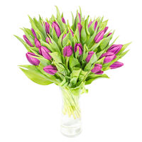 Bouquet of violet tulips Violet Tulips - view more