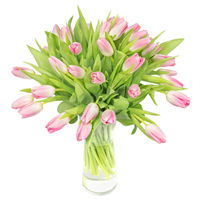 Bouquet of pink tulips Spring sunshine - view more