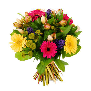 Mixed bouquet Domino - view more