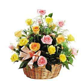 Basket of roses Colorful fireworks - view more