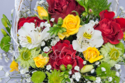 Букет со смыслом: какие цветы подарить девушке?