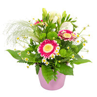 Arrangement Morning Smile - view more