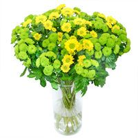 Bouquet Brightful Chrysanthemums - view more