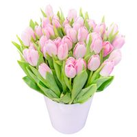Bouquet of tulips Venus - view more