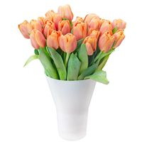 Bouquet of tulips Dance of Spring