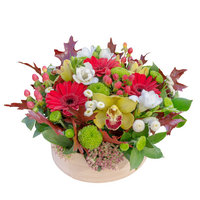 Arrangement Born in the Autumn - view more
