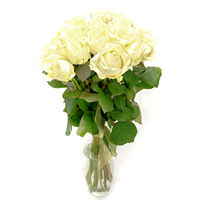 Bouquet of white roses Good Evening