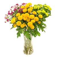 Bouquet chrysanthemums Seasons Of The Year