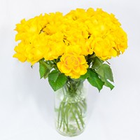 Bouquet of yellow roses Sunny Morning