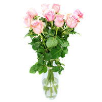 Bouquet of pink roses Surprise