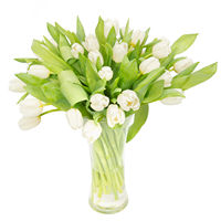 Bouquet white of tulips White Breeze