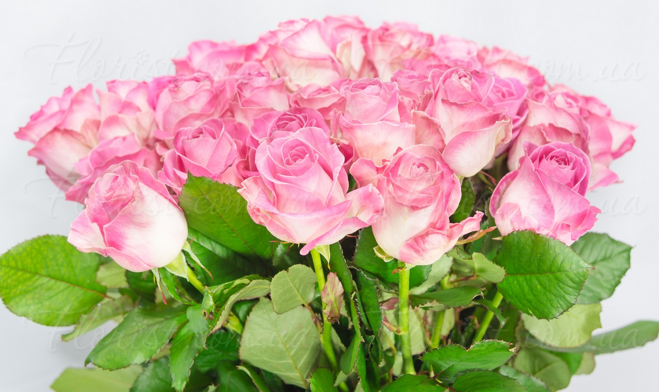 знать найти картинки крупные букеты розовых роз самом начале