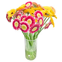 Bouquet Bright Gerberas - view more