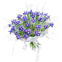Bouquet Iris Salute - view more