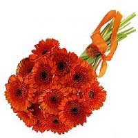 Bouquet of red-orange gerberas Red Sun - view more