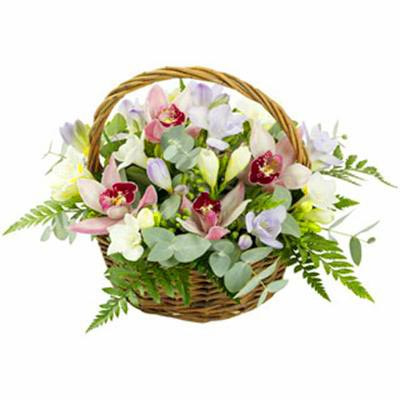 Basket of orchids Juliana