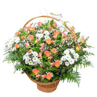 Flowers basket Bright Morning - view more