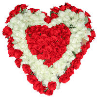 Huge heart of red and white roses