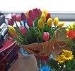 Фото 1. Доставка букету тюльпанів - Osiek maly, Польща. florist.com.ua