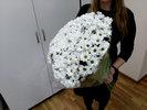 Фото 2. Доставка букета белых кустовых хризантем по Киеву, Украина. florist.com.ua